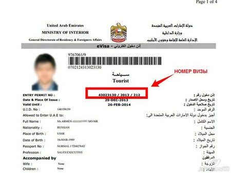 Дубайская виза
